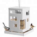 amazing-bird-feeder-3